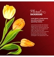 Yellow tulips and text place vector