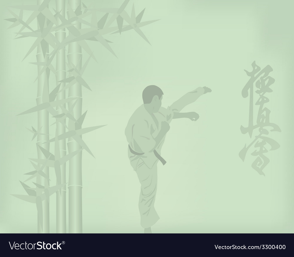 The the man is engaged in karate on a green vector | Price: 1 Credit (USD $1)