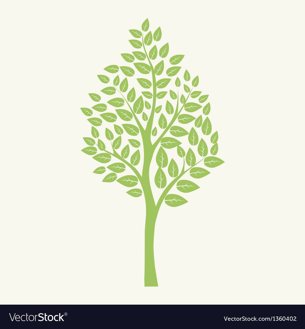 Green tree isolated on white for your design vector | Price: 1 Credit (USD $1)