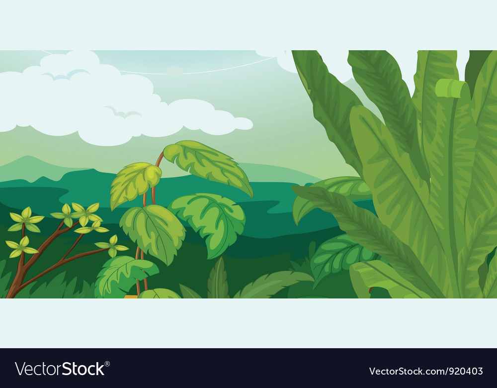 Lush plant life vector | Price: 1 Credit (USD $1)