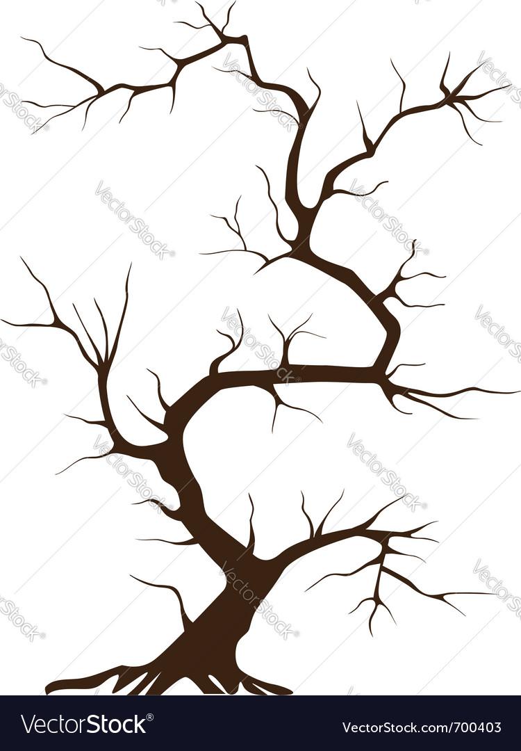 Tree without leaves vector | Price: 1 Credit (USD $1)
