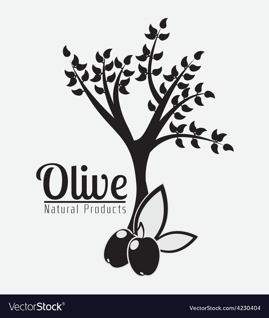 Olive oil design vector | Price: 1 Credit (USD $1)