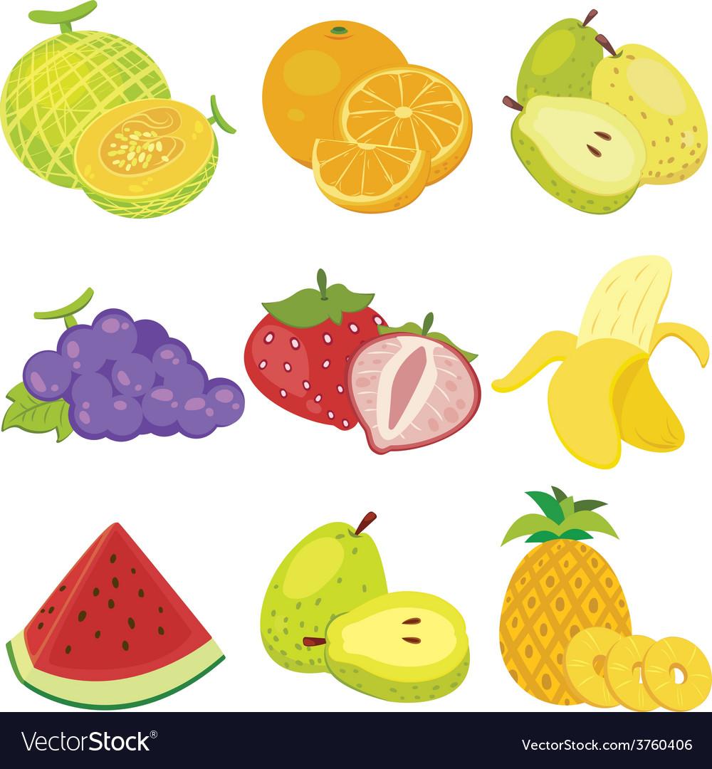 Cartoon fruit design vector