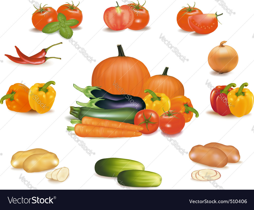 Super group some vegetables vector | Price: 3 Credit (USD $3)
