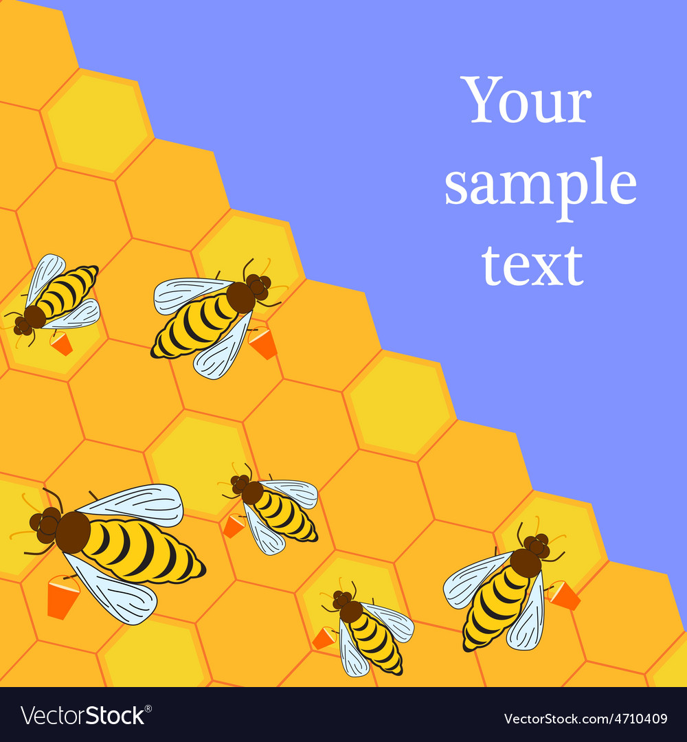 Bees and honeycombs vector | Price: 1 Credit (USD $1)