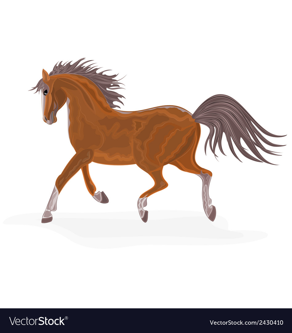 Brown-horse vector | Price: 1 Credit (USD $1)