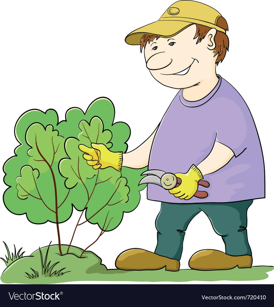 Gardener cuts a bush vector | Price: 3 Credit (USD $3)
