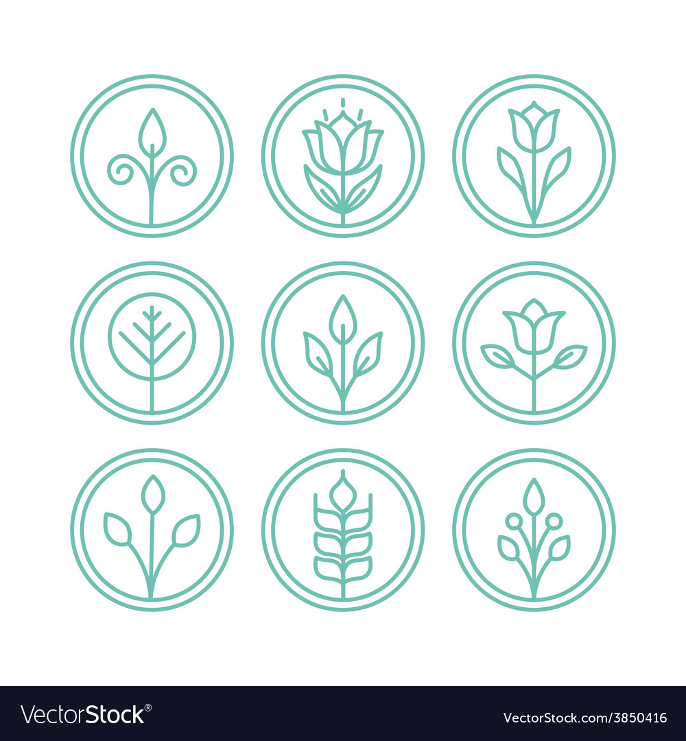 Leaves and flowers vector | Price: 1 Credit (USD $1)