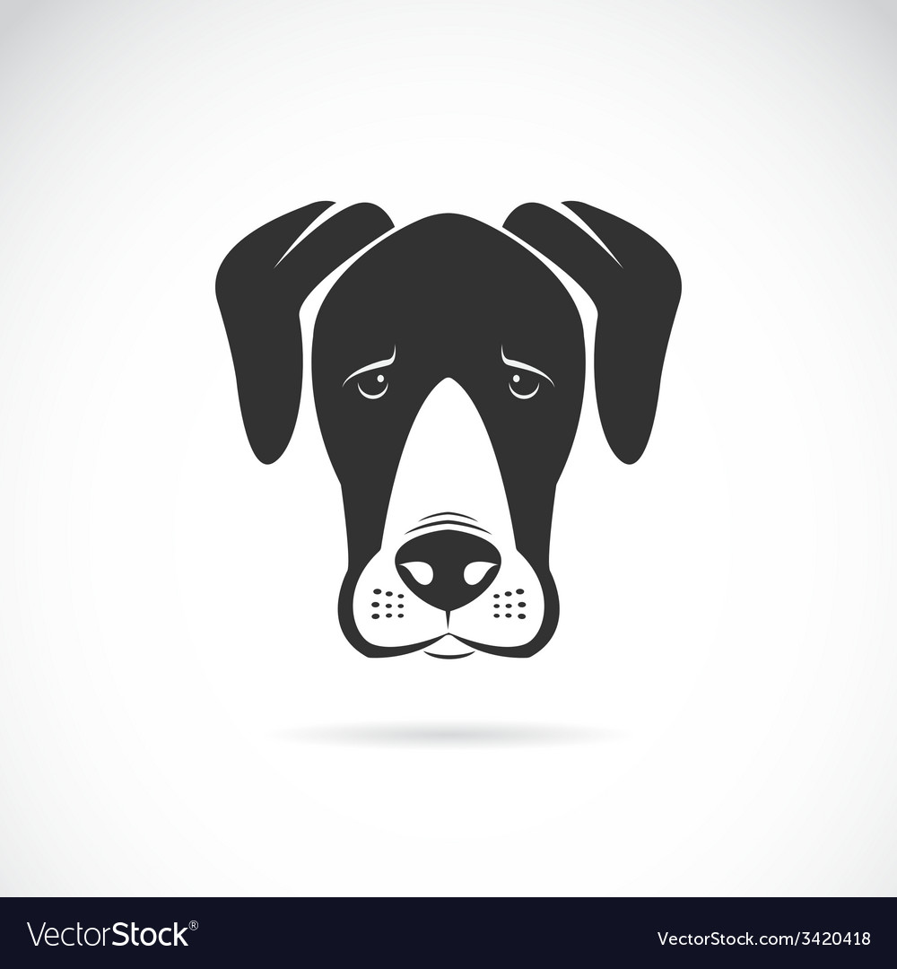 Dog great dane vector | Price: 1 Credit (USD $1)