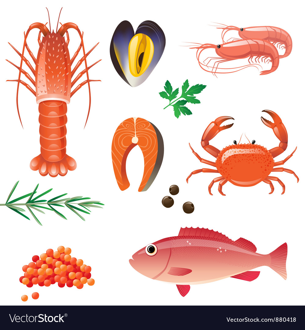 Sea food vector | Price: 5 Credit (USD $5)