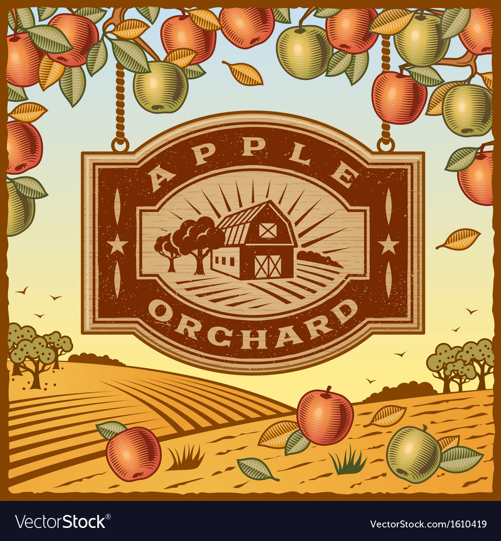Apple orchard vector | Price: 1 Credit (USD $1)