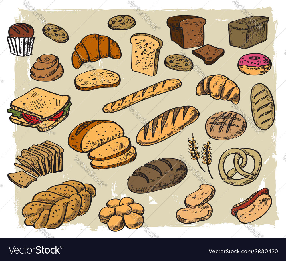 Bread on white background vector | Price: 1 Credit (USD $1)
