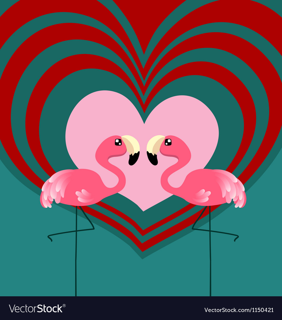 Couple flamingo love vector