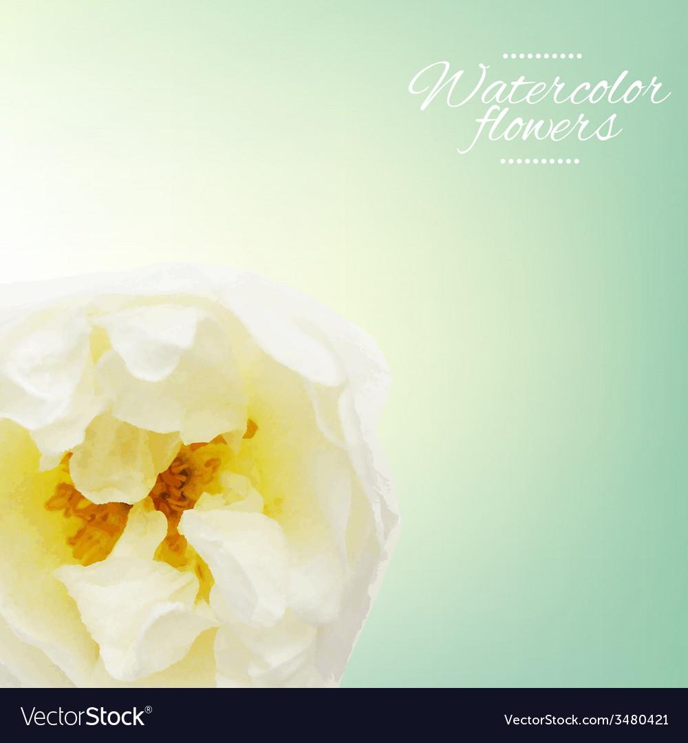 Pastel rose vector | Price: 1 Credit (USD $1)