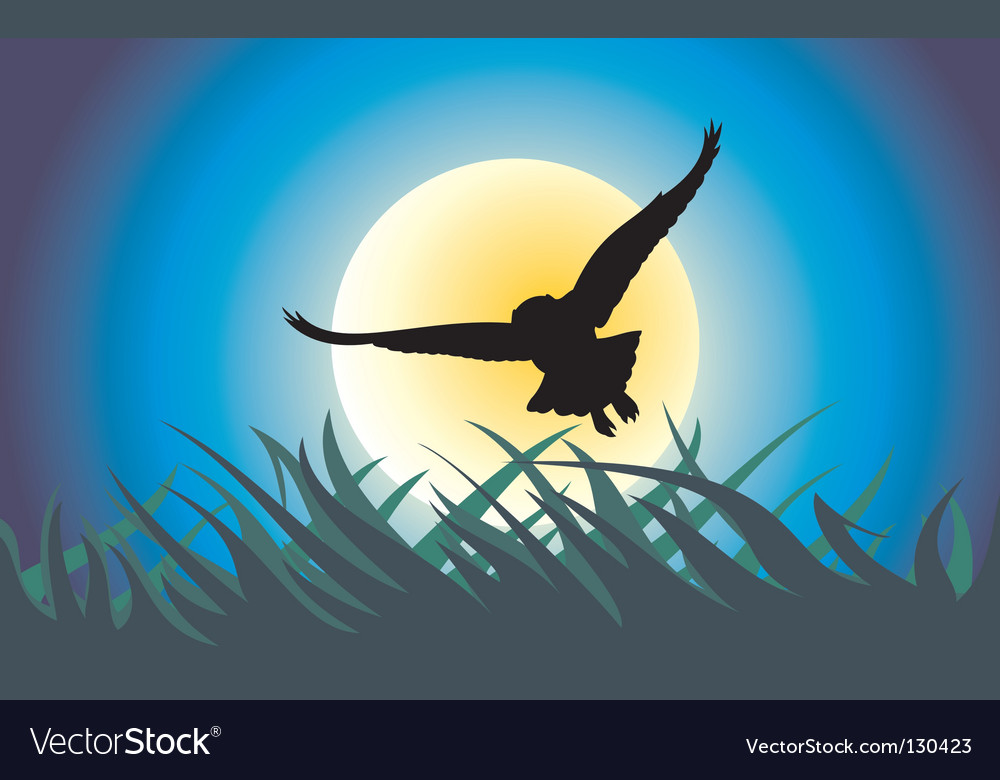 Owl hunting vector | Price: 1 Credit (USD $1)