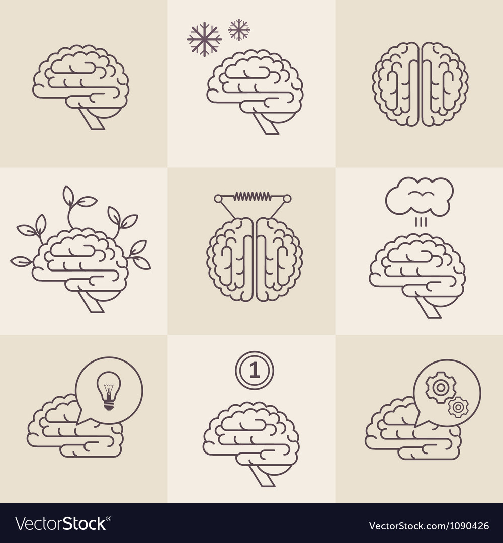 Brain icons vector