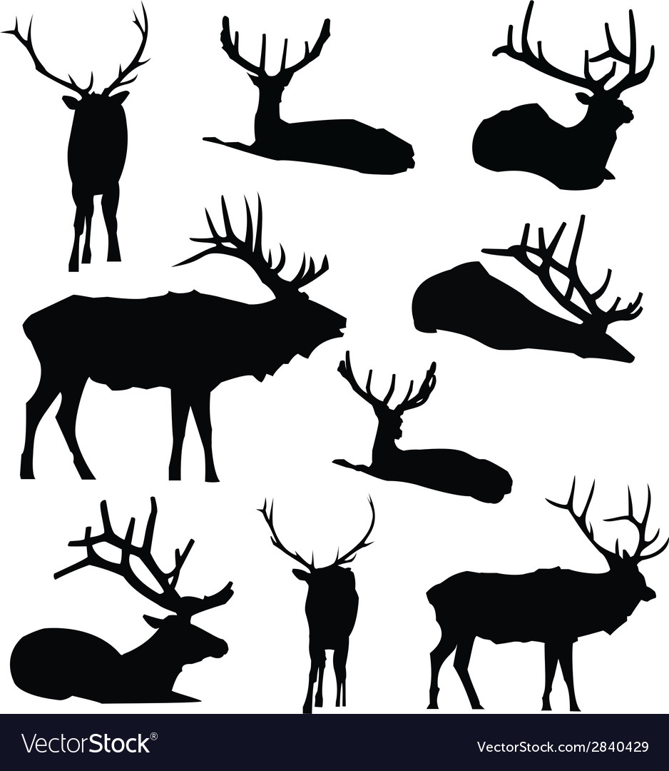 Elk silhouette deer animal digital clip art vector | Price: 1 Credit (USD $1)