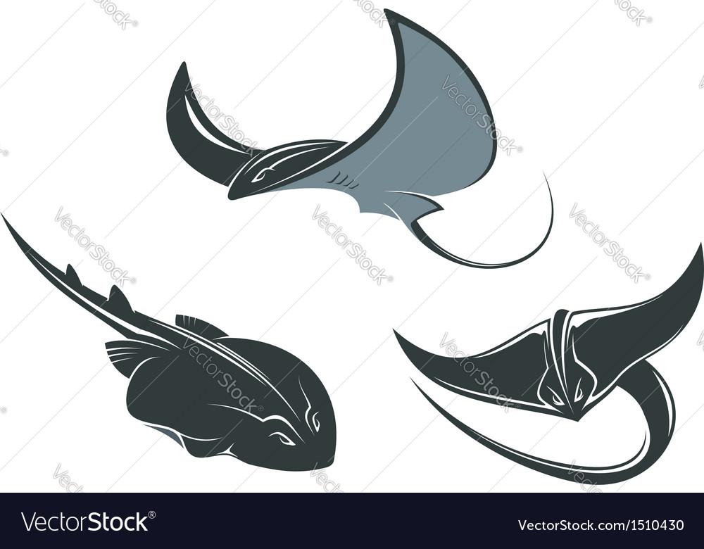 Stingray mascots vector | Price: 1 Credit (USD $1)