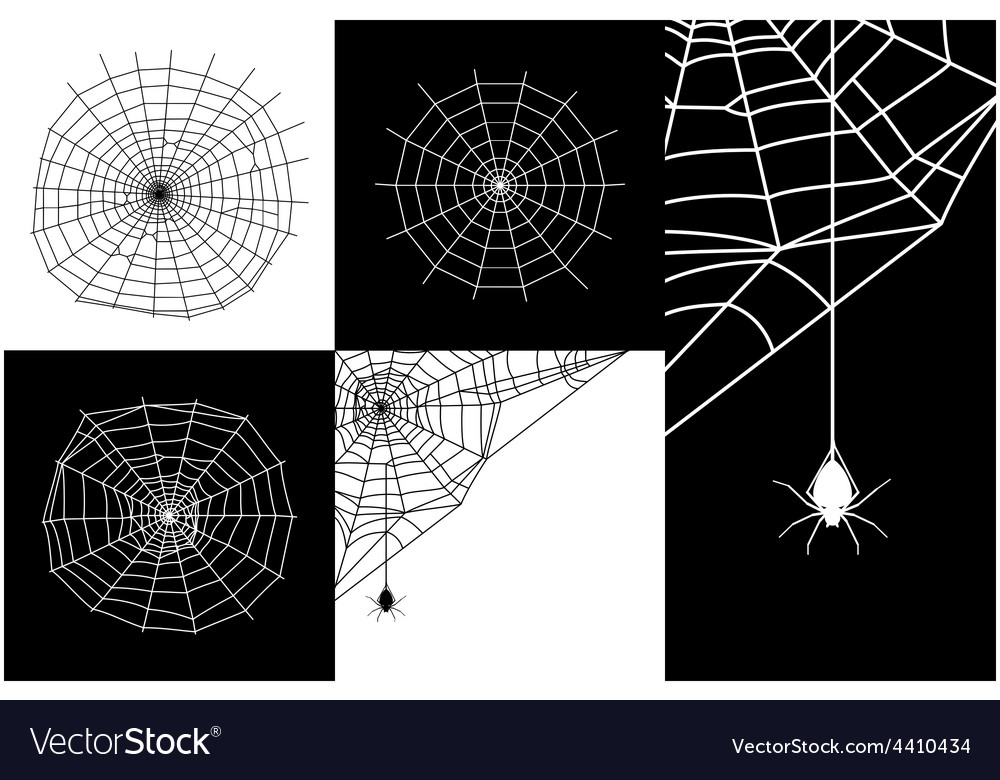 Cobweb or spider web silhouettes set vector | Price: 1 Credit (USD $1)