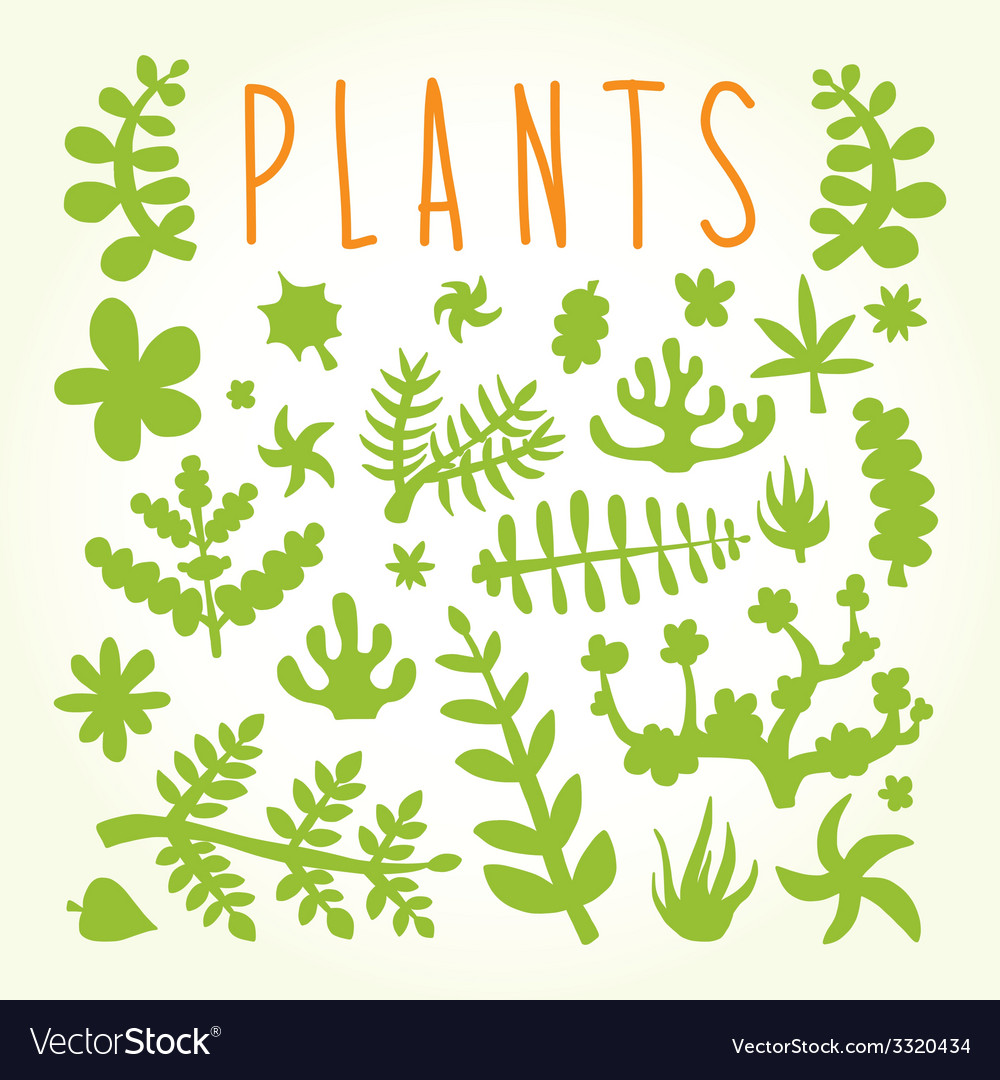 Hand drawn doodle plants vector | Price: 1 Credit (USD $1)