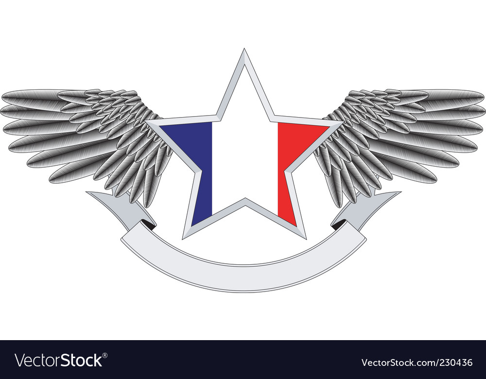 Winged star with french flag vector | Price: 1 Credit (USD $1)