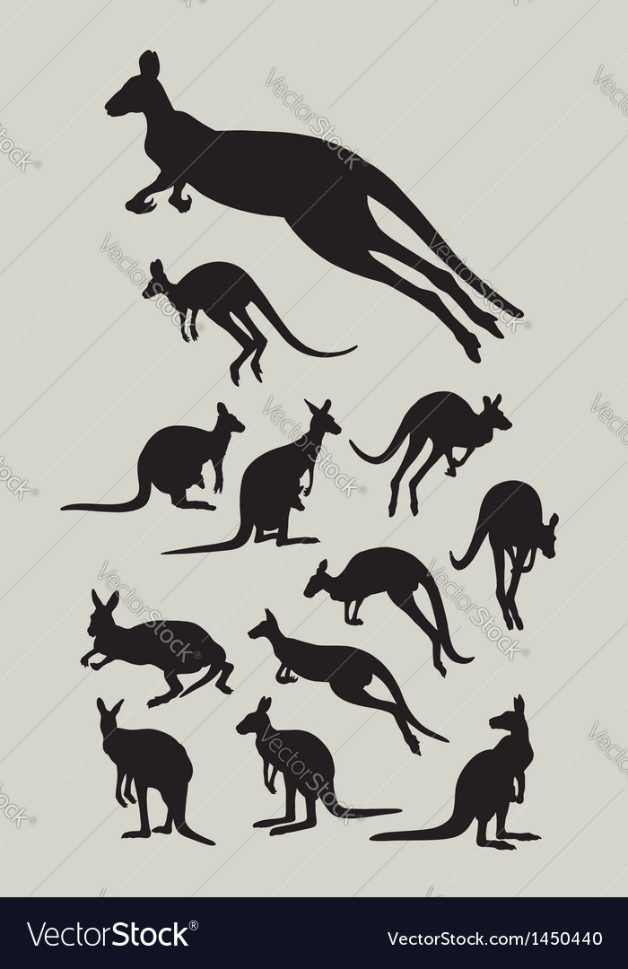 Kangaroo silhouettes vector | Price: 1 Credit (USD $1)