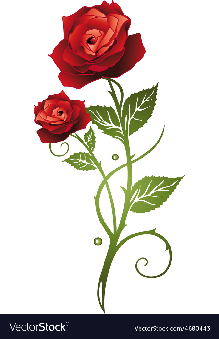 Rose floral vector   Price: 1 Credit (USD $1)