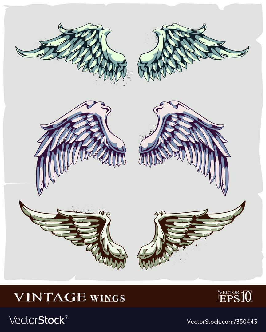 Wings for your vintage design vector | Price: 1 Credit (USD $1)