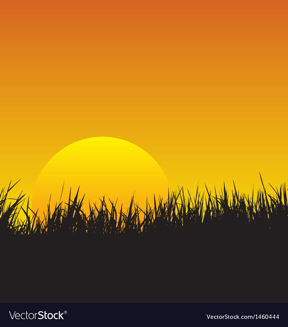Sunset vector | Price: 1 Credit (USD $1)