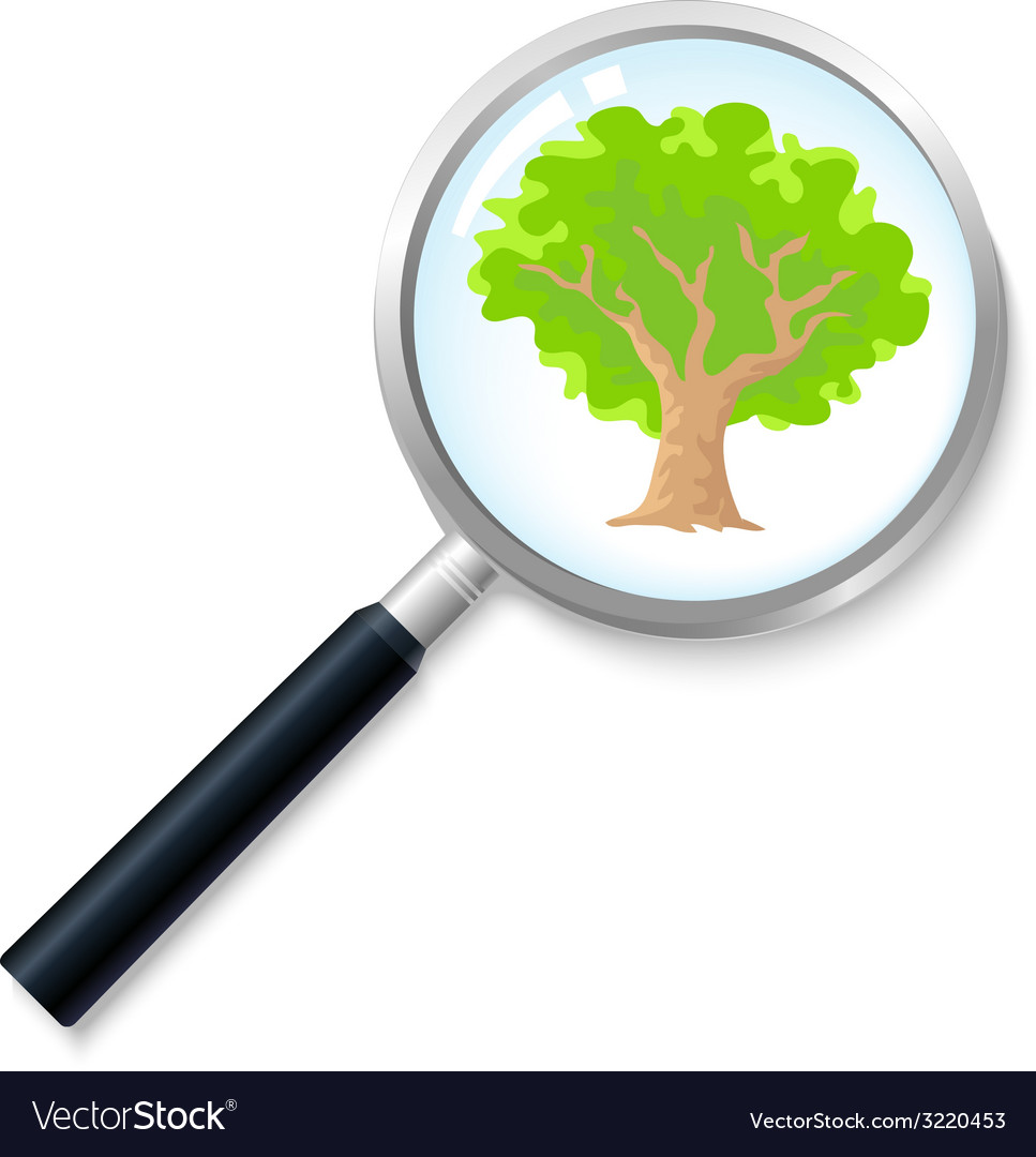 Treesearch vector | Price: 1 Credit (USD $1)