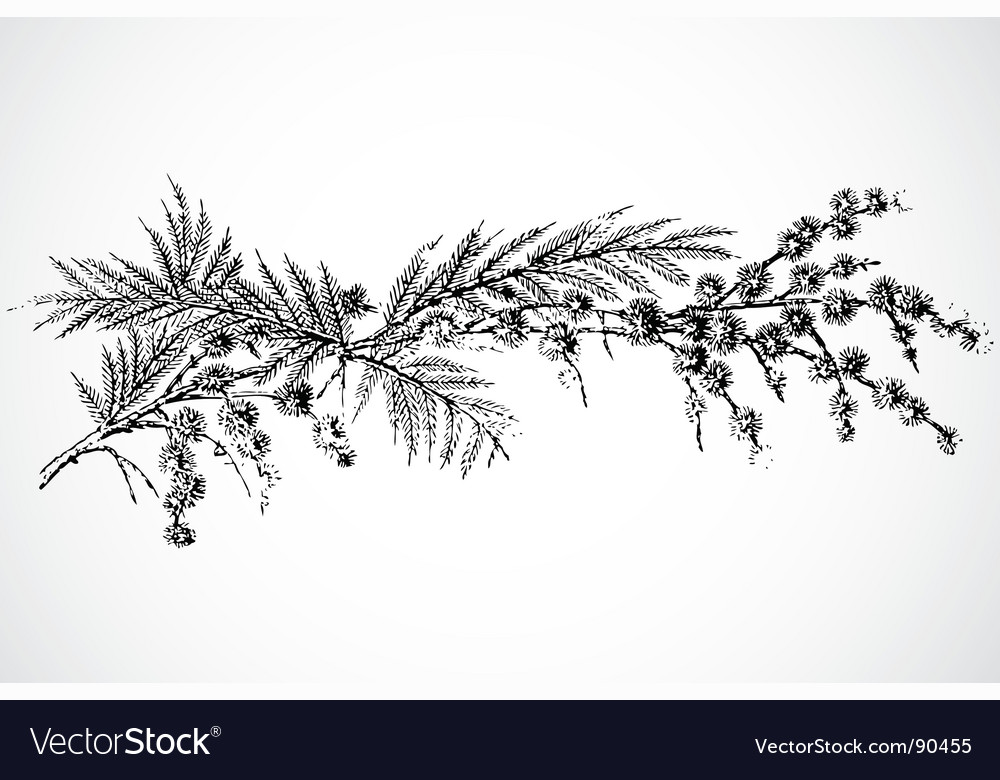 Twig ornament vector | Price: 1 Credit (USD $1)