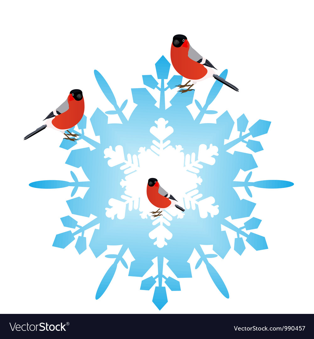 Bullfinches on a snowflake vector   Price: 1 Credit (USD $1)
