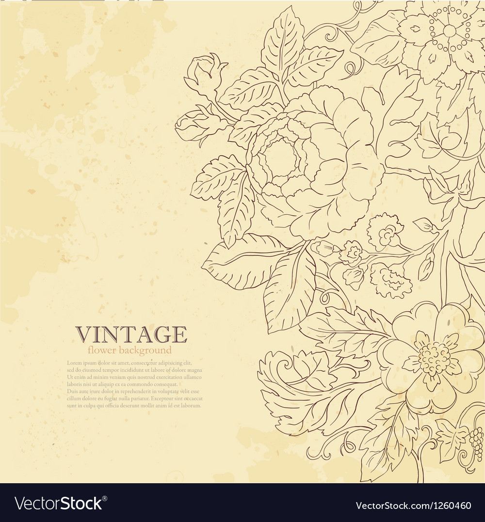 Vintage grunge flower backgriund vector | Price: 1 Credit (USD $1)