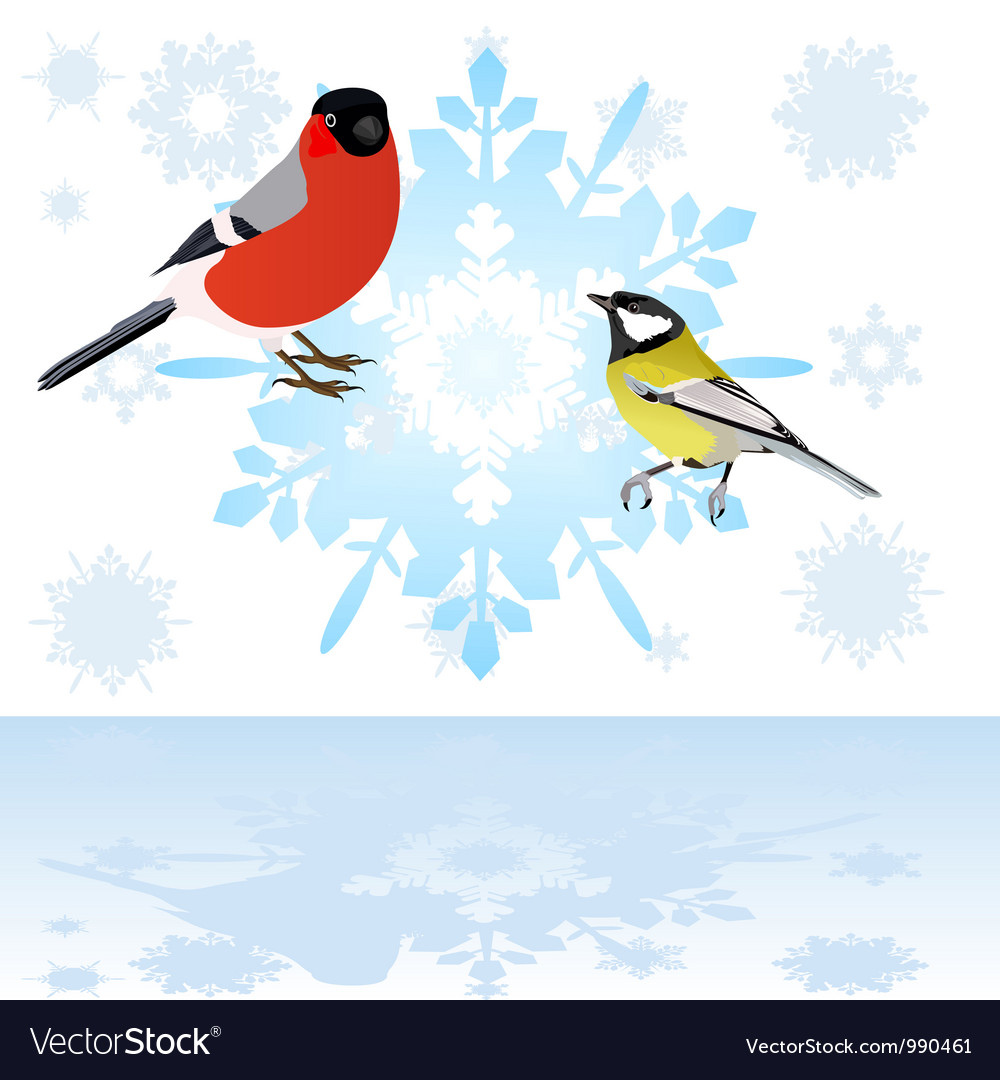 Bullfinch and tits on a snowflake vector | Price: 1 Credit (USD $1)