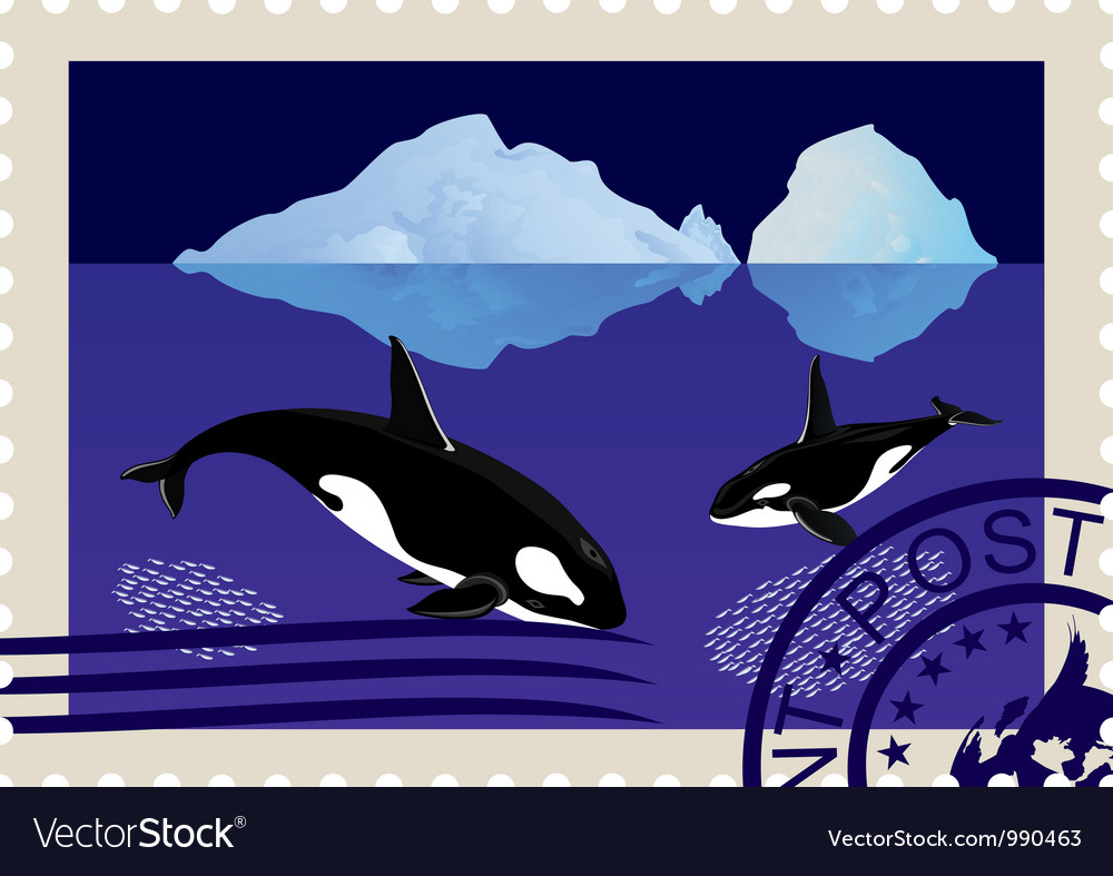 Postage stamp with killer whales vector | Price: 3 Credit (USD $3)