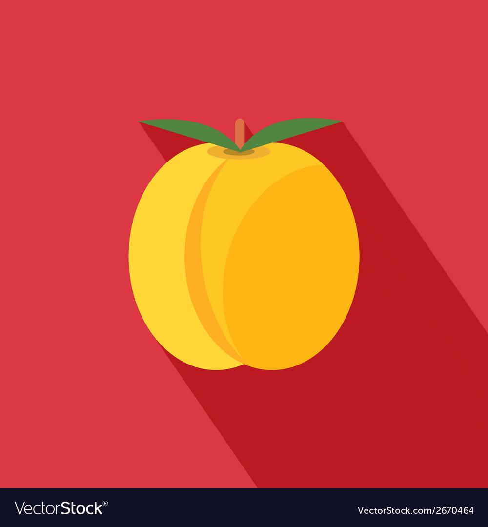 Apricot icon vector | Price: 1 Credit (USD $1)
