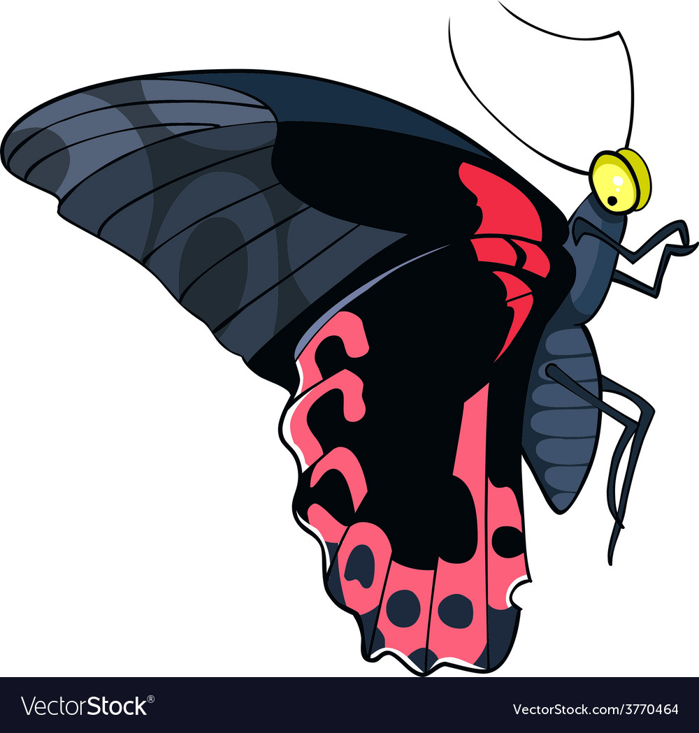 Butterfly black and red vector | Price: 1 Credit (USD $1)