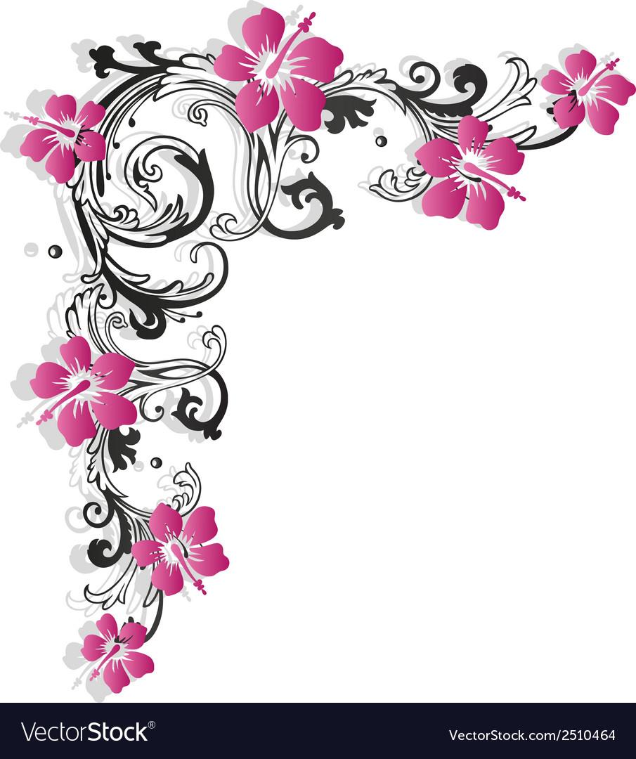 Hibiscus vintage vector