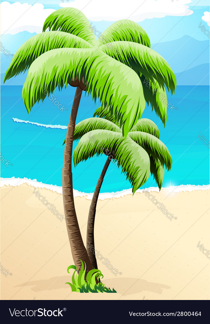 Palm trees on a beach vector | Price: 1 Credit (USD $1)