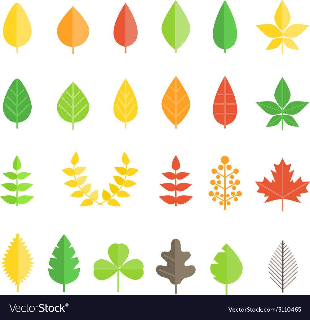Different leaf collection isolated on white vector | Price: 1 Credit (USD $1)
