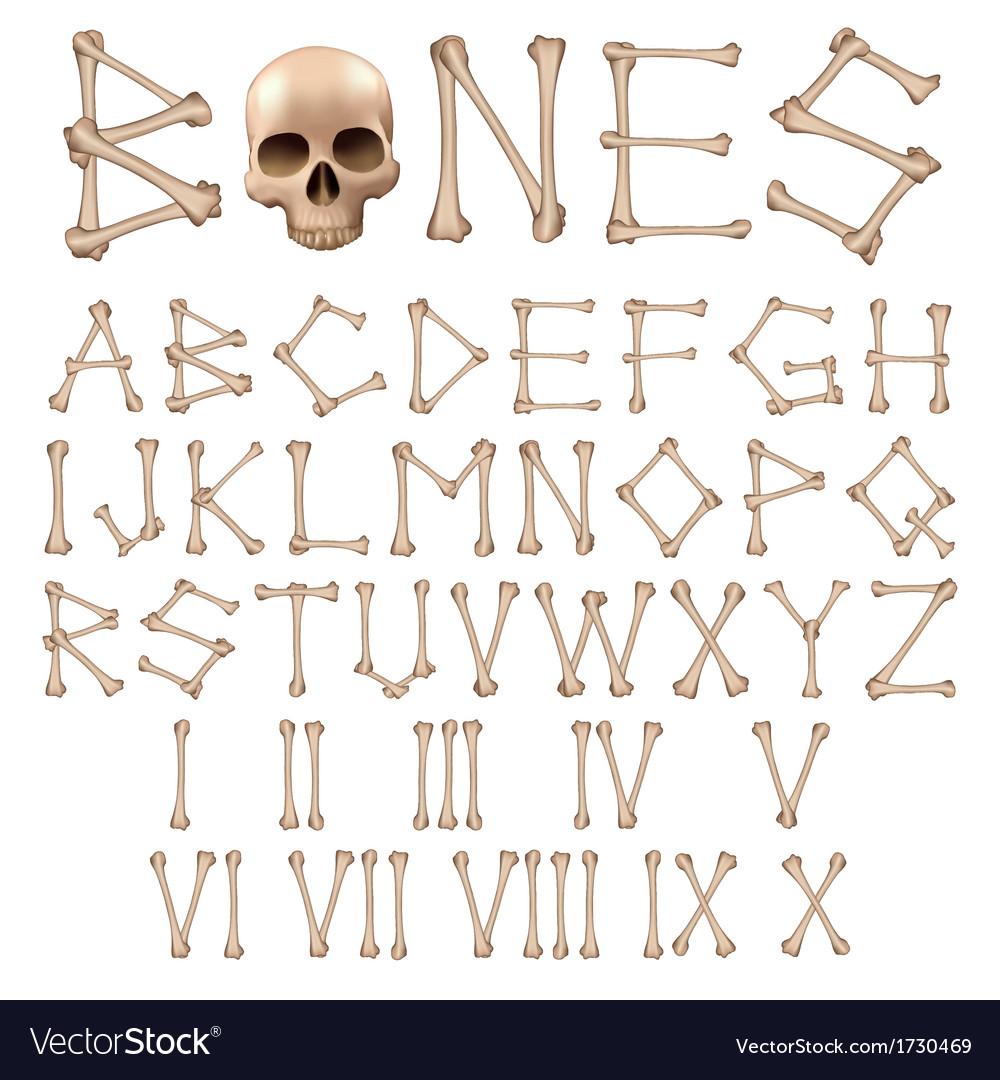 Bones alphabet vector | Price: 1 Credit (USD $1)