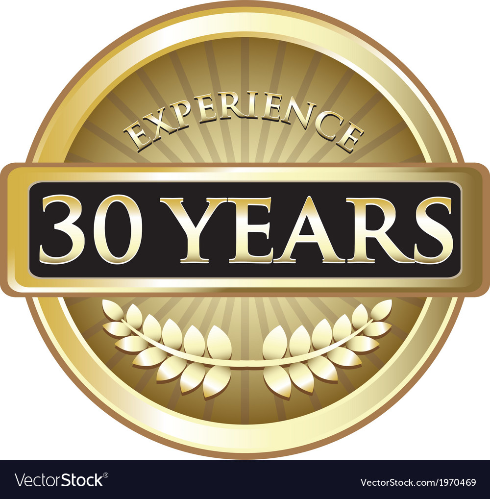 Thirty years experience gold vector | Price: 1 Credit (USD $1)