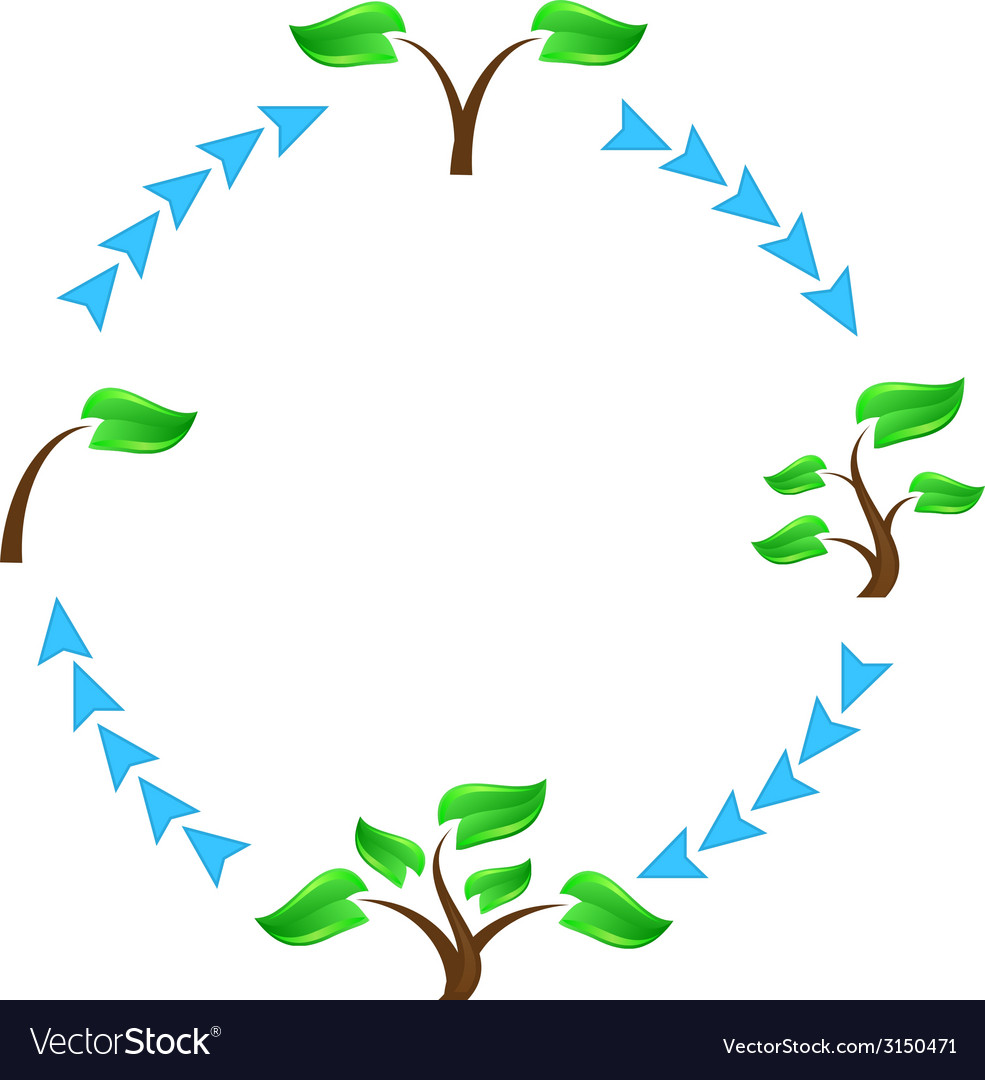 Tree symbols vector | Price: 1 Credit (USD $1)