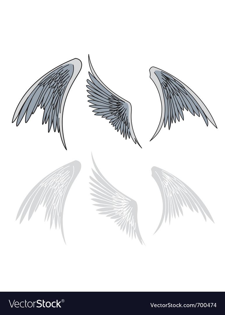 Avian wings vector | Price: 1 Credit (USD $1)