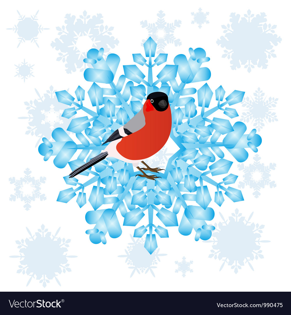 Bullfinch and a snowflake vector | Price: 1 Credit (USD $1)