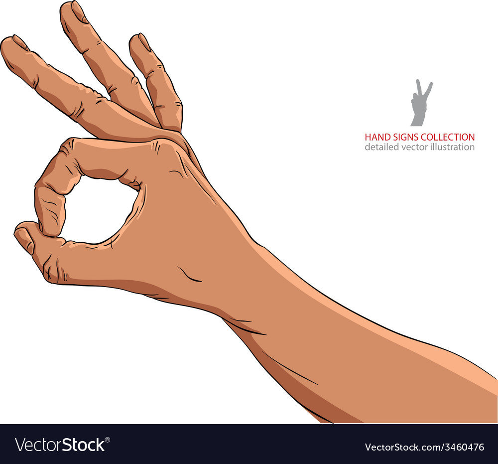 Okay hand sign african ethnicity detailed vector | Price: 1 Credit (USD $1)