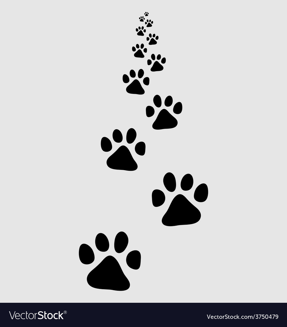 Trail of dog vector | Price: 1 Credit (USD $1)
