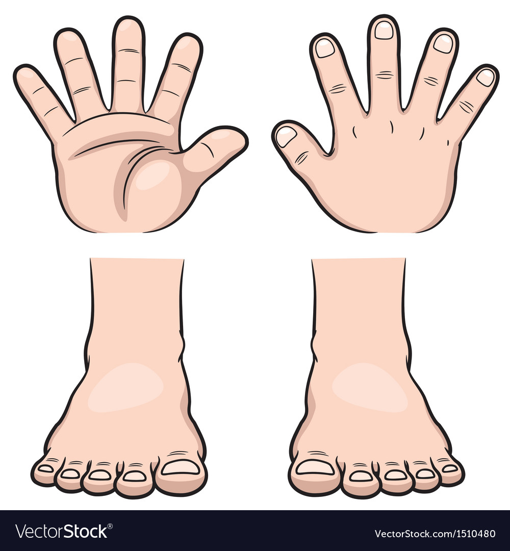 Hands and feet vector | Price: 1 Credit (USD $1)