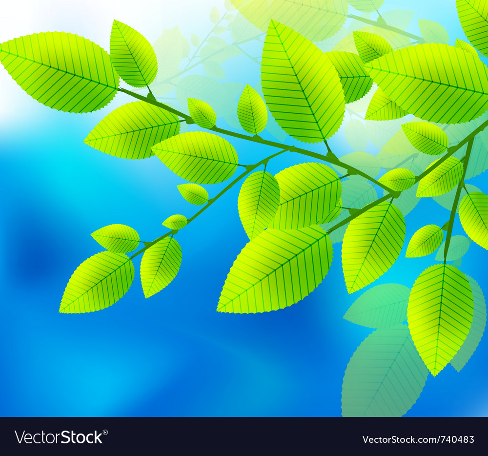 Green leaves on the blue sky vector | Price: 1 Credit (USD $1)