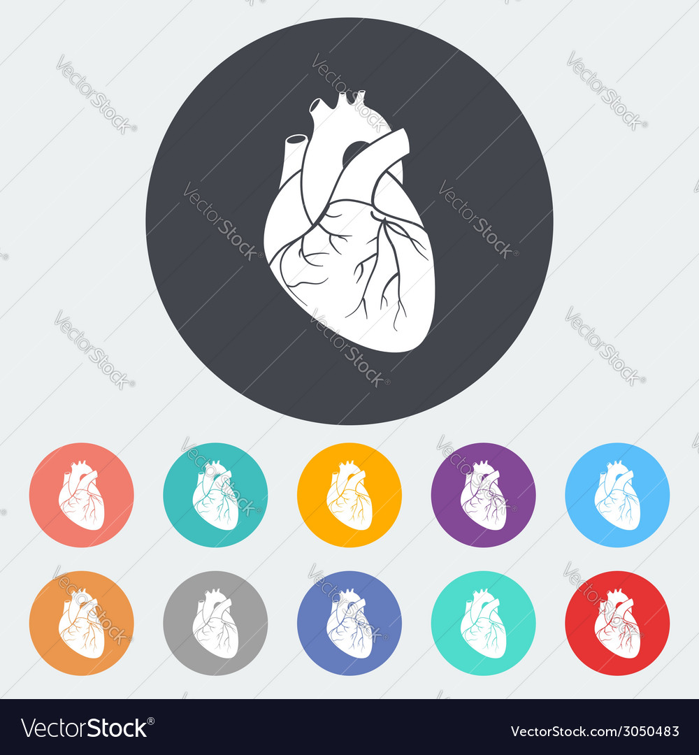 Heart flat icon vector | Price: 1 Credit (USD $1)